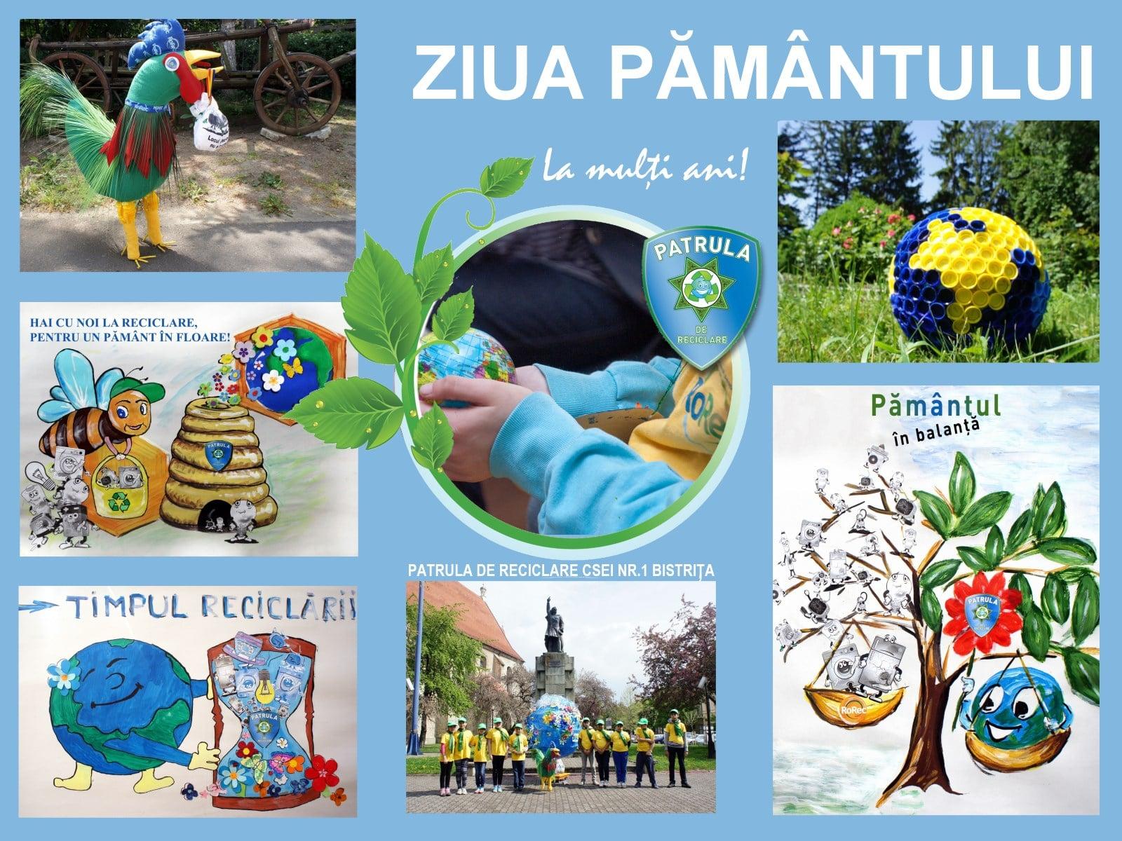CSEI nr.1 Bistrita mascote educatie eco